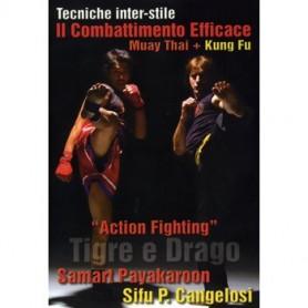 ACTION FIGHTING. TIGRE E DRAGO