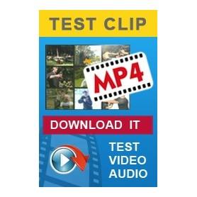 Demo Clip
