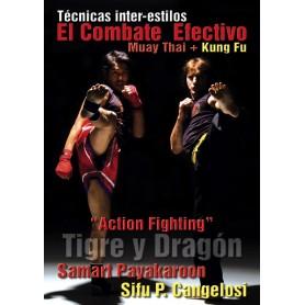 El Combate Efectivo, Tecnicas Inter-Estilos Muay Thai y Kung Fu