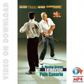 Palo Canario Canarian Stick