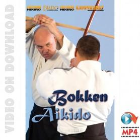 Basic Bokken Aikido