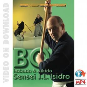 Kobudo & Aikido Bo-Jutsu
