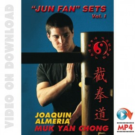 Wooden Dummy JKD Jun Fan Sets
