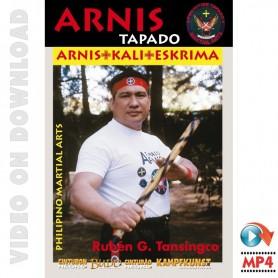 フィリピン武術:アーニス シングルスティック型