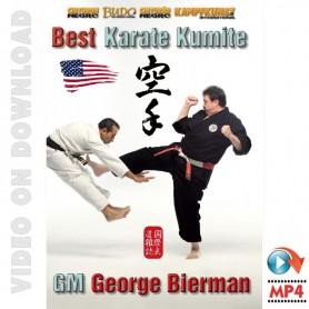 Best Karate Kumite
