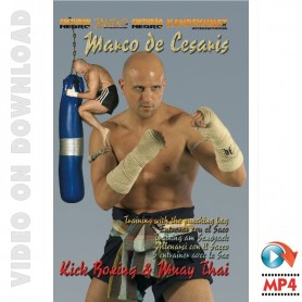Muay Thai & Kick Boxing Punching Bag