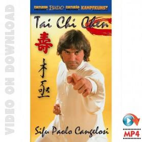 Tai Chi Chen Xia Jia Pao Chuie Forma