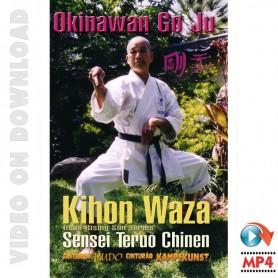 Goju Ryu Karate Vol 1 Kihon Waza