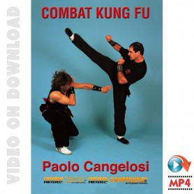Combat Kung Fu Free Style