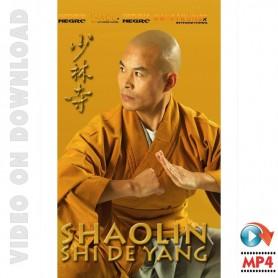Shaolin Kung-Fu Shi De Yang Interview