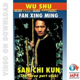 Wu Shu San Jie Kun El Palo de 3 Secciones
