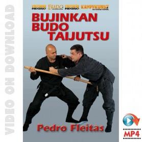 Bujinkan Budo Tai Jitsu