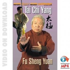 Tai Chi Yang Style Vol 3