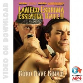 Lameco Eskrimaのナイフ 第2部