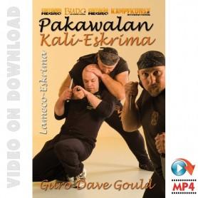 Lameco Eskrima Pakawalan. Essential Knife Vol4