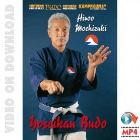 Yoseikan Budo