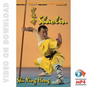 The 18 movements of Shaolin Kung Fu