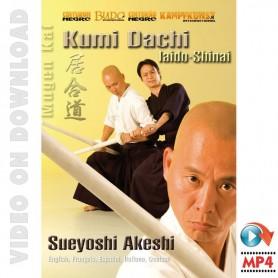 Iaido Shinai