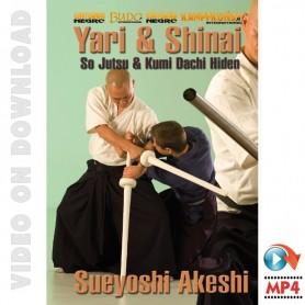 Yari and Shinai