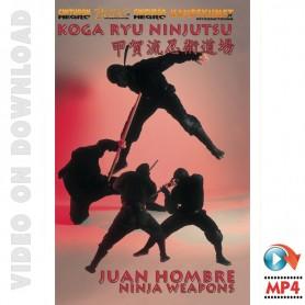 Koga Ryu Ninjutsu Armes