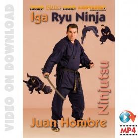 Iga Ryu Ninjutsu Mãos Nuas