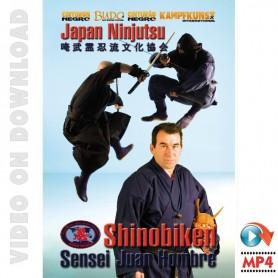 Japan Ninjutsu Shinobiken