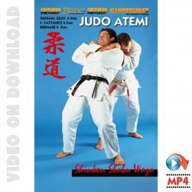 Judo Atemi