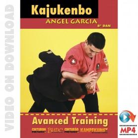 Kajukenbo Vol 3