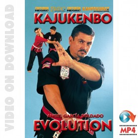 Kajukenbo Evolution