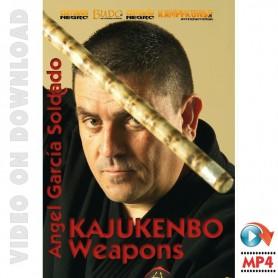 Kajukenbo Weapons