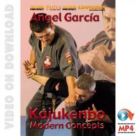 Kajukenbo Conceptos modernos