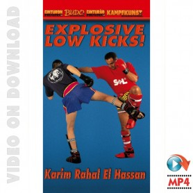 Kick Boxing Explosive Low Kicks