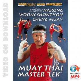 Muay Thai Cheng Muay