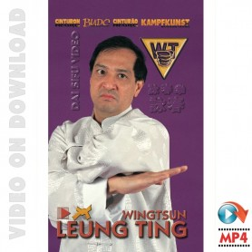 Wing Tsun Vrai ou Faux?