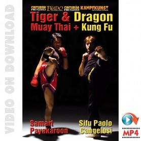 Kung Fu & Muay Thai Dragon & Tiger