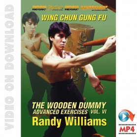 Wing Chun Wooden Dummy Form Advanced Drills