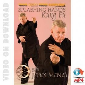 Kung Fu Splashing Hands