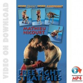 MMA Free Fight Strategies