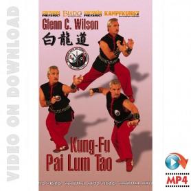 Kung Fu Pai Lum Tao
