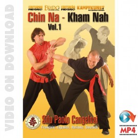 Kung Fu Chin Na Vol 1