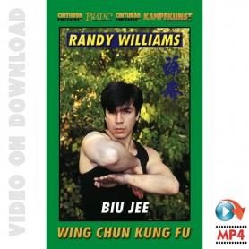 Wing Chun Kung Fu Biu Jee