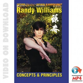 Wing Chun Kung Fu Concepts et pricipes