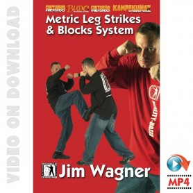 Metric Leg Strikes & Blocks System