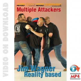 Reality Based Multiple Attackers