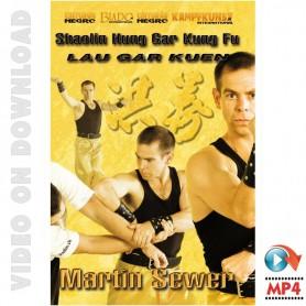Hung Gar kung Fu Lau Gar Kuen Form