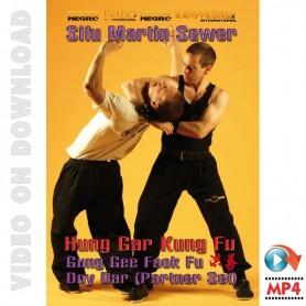 Shaolin Hung Gar Gung Gee Fook Fu Doy Dar