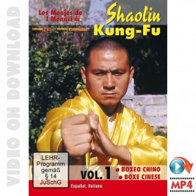 Shaolin Kung Fu Boxing