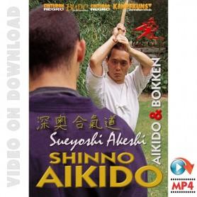 Shinno Aikido Aikido & Bokken