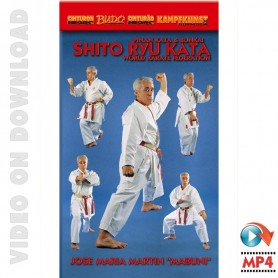 Shito Ryu Karate Pinan Kata & Bunkai Vol1