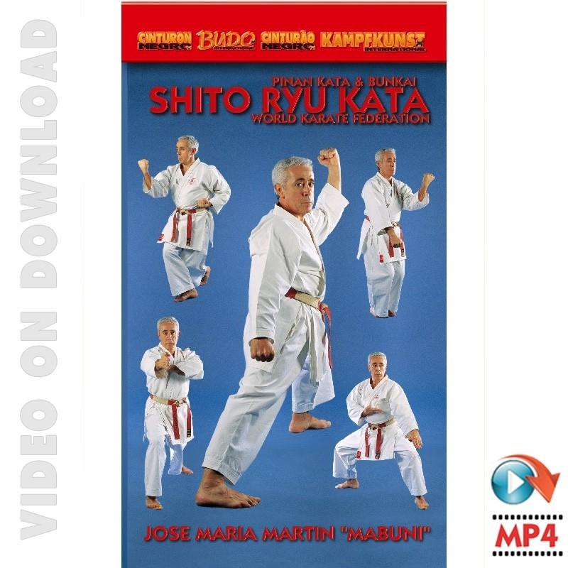 karate taekwondo kata